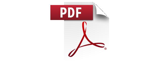 pdf-icon-large